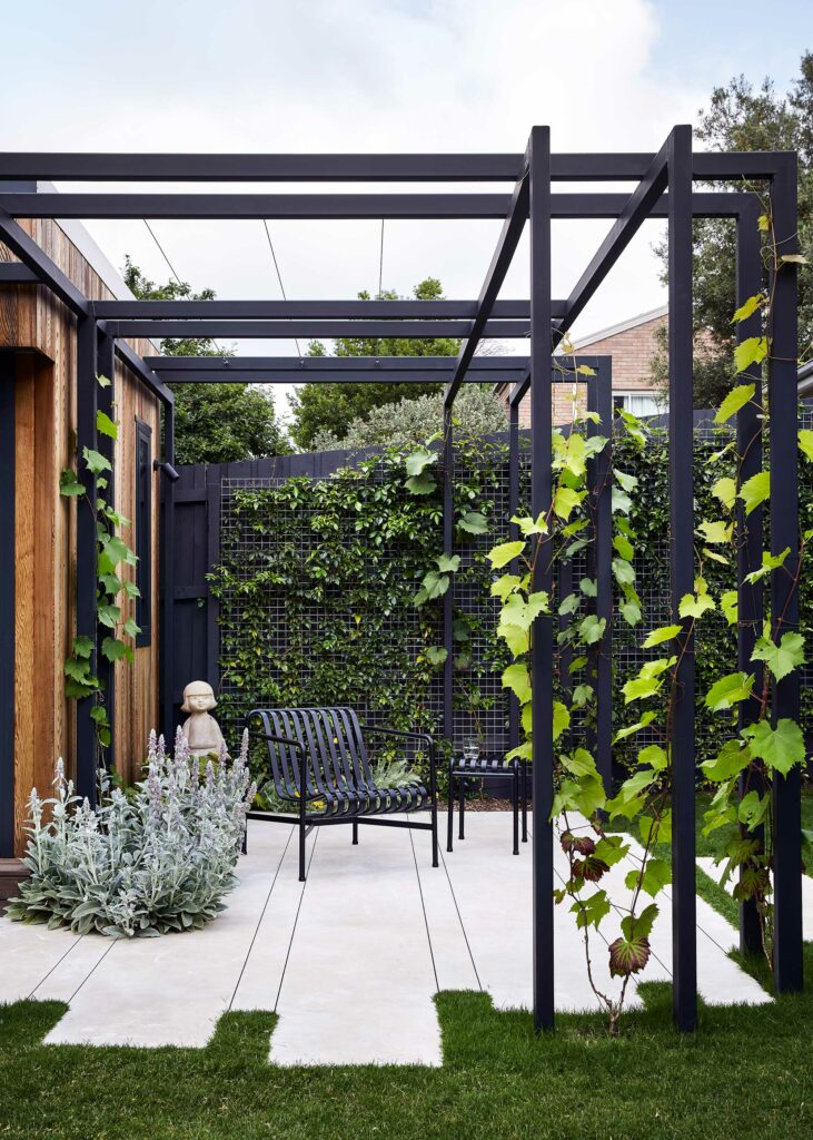 Maike Design backyard. Black painted pergola and grape vines. Concrete seating area with planted wall of vines